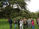 Forestry field trip to Blarney Castle Estate